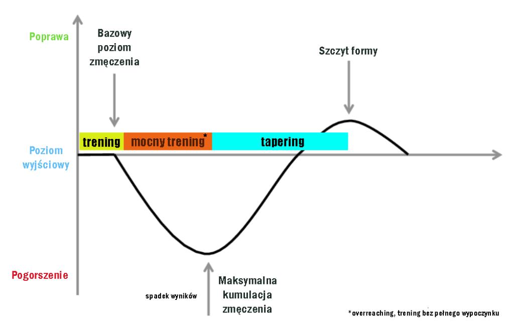 obciążenia treningowe a forma